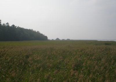 Boddenwanderweg